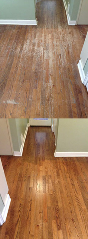 screen and coating floor refinishing